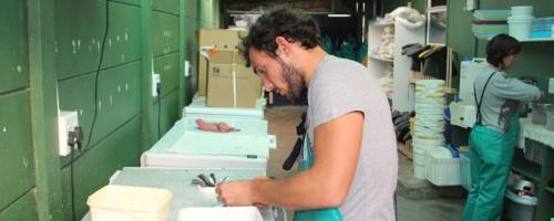 Arbeit in der Rettungsstation