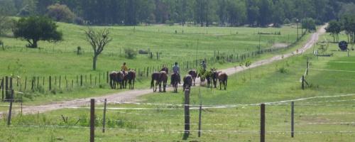 Das Ranchgelände