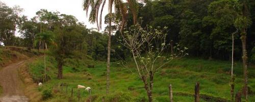 Costa Rica Inland